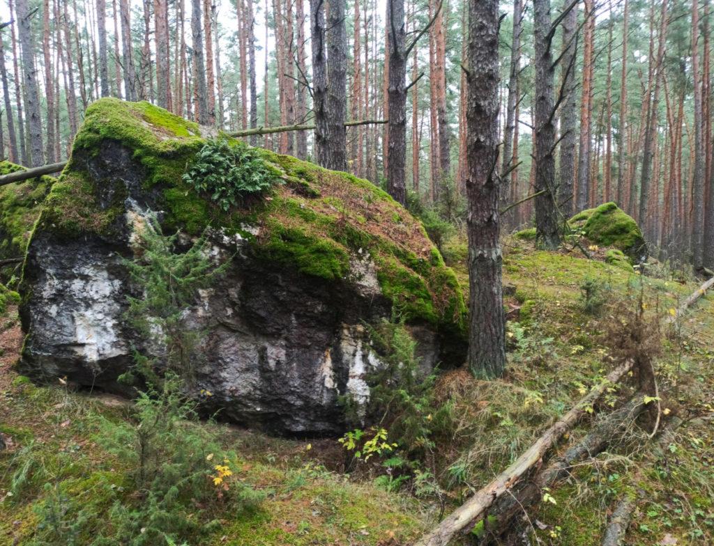 Pozostałości IV Fortu - Twierdza Osowiec